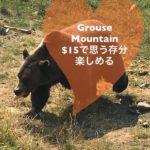 【カナダ】絶景を楽しめるグラウスマウンテン(Grouse Mountain)紹介!!!
